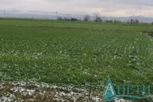 For sale Agricultural land Sofia