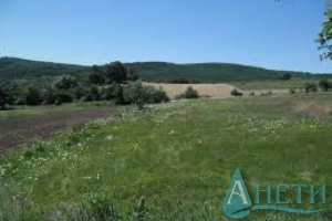 For sale Agricultural land Panagyurishte