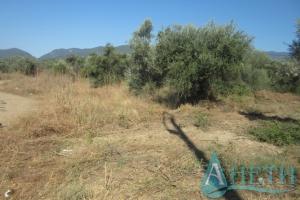 Satılık Düzenlenen arazi arsa  Selanik Selanik k.s.Vrasna