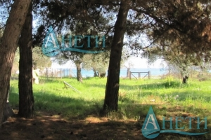 For sale Regulated plot of land Vatopedi, Greece